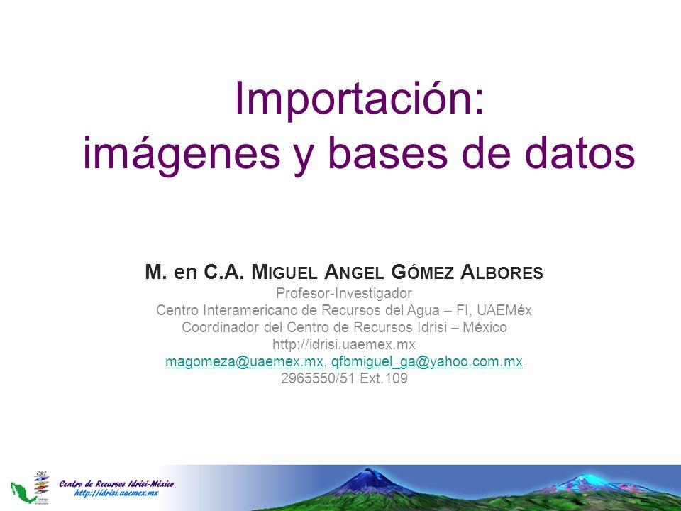 Importación: imágenes y bases de datos M. en C.A. M IGUEL A NGEL G ÓMEZ A LBORES Profesor-Investigador Centro Interamericano de Recursos del Agua – FI