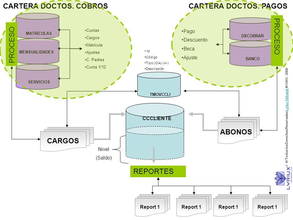 CCCLIENTE CARGOS ABONOS Nivel (Saldo) Cuotas Cargos Matrícula Ajustes C. Padres Cuota 1/12 Pago Descuento Beca Ajuste TMOVCCLI Id Código Tipo (C/A) (+