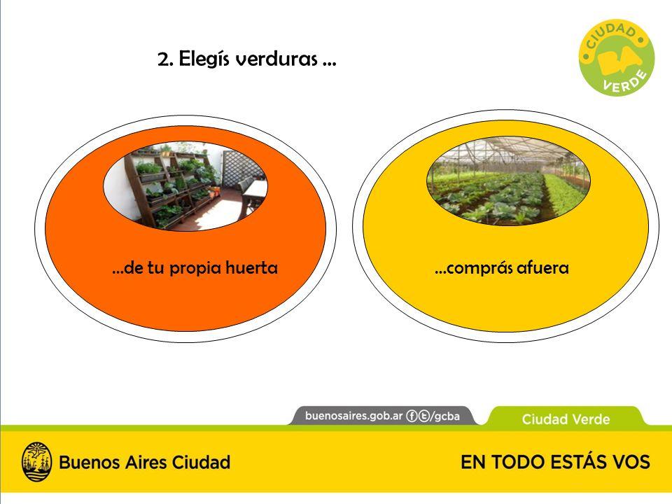 2. Elegís verduras … …de tu propia huerta…comprás afuera