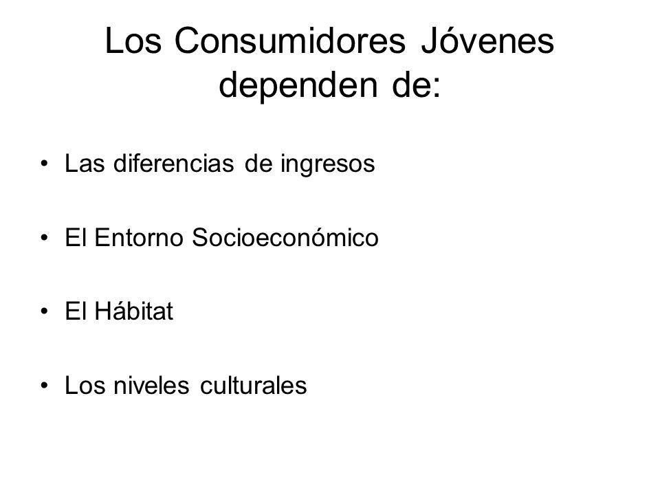 Los Consumidores Jóvenes dependen de: Las diferencias de ingresos El Entorno Socioeconómico El Hábitat Los niveles culturales