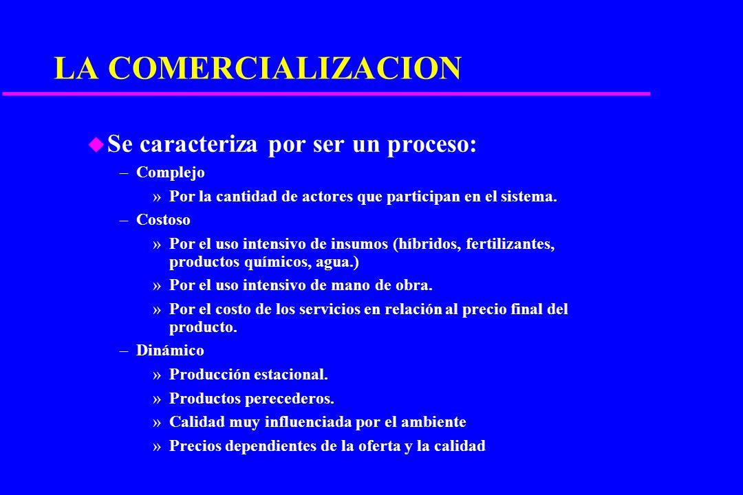 COMERCIALIZACIÓN DE HORTALIZAS u CONCEPTO –La comercialización es la ejecución de todas las actividades de negocios relacionada con el movimiento de b