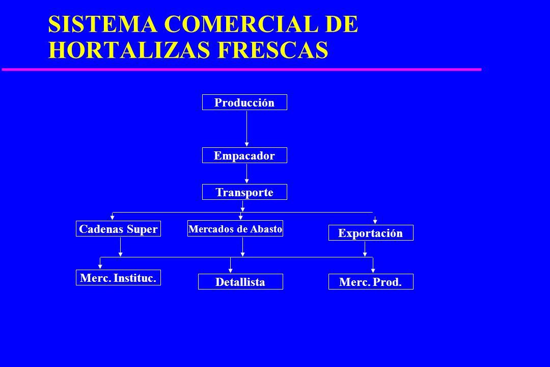 PRINCIPALES ACTORES DEL PROCESO u PRODUCTORES u INTERMEDIARIOS u CONSUMIDORES