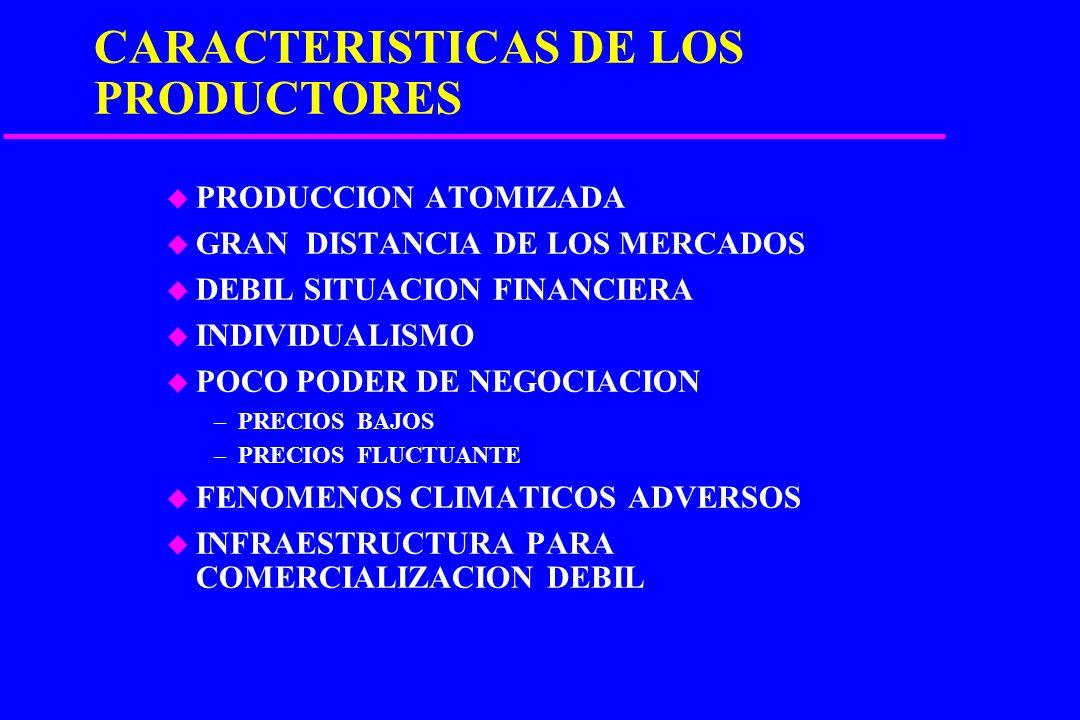 SISTEMA COMERCIAL DE HORTALIZAS FRESCAS Producción Merc. Instituc. Cadenas Super Mercados de Abasto Exportación Transporte Empacador Merc. Prod.Detall