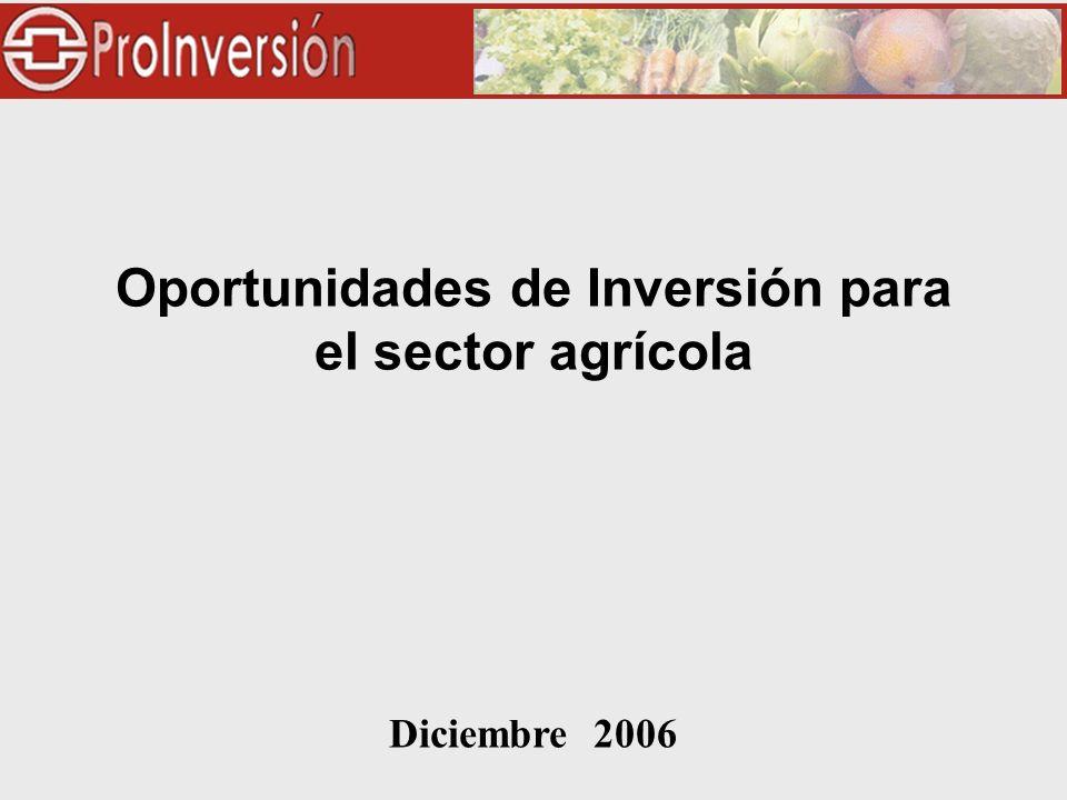 Diciembre 2006 Oportunidades de Inversión para el sector agrícola