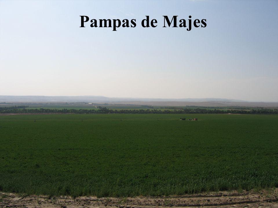 Perú Oportunidades de Inversión para el sector agrícola Diciembre 2006