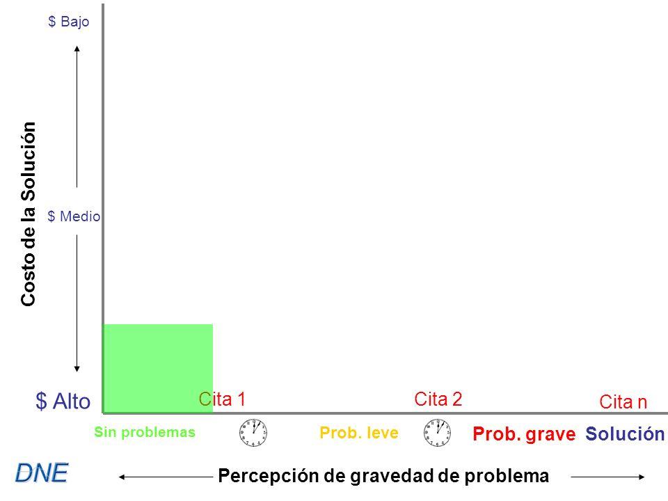 Cita 1Cita 2 Cita n $ Bajo $ Medio $ Alto Costo de la Solución Percepción de gravedad de problema Sin problemas Prob.