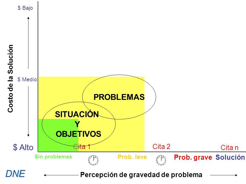 Cita 1Cita 2 Cita n $ Bajo $ Medio $ Alto Costo de la Solución Percepción de gravedad de problema SITUACIÓN Y OBJETIVOS PROBLEMAS Sin problemas Prob.