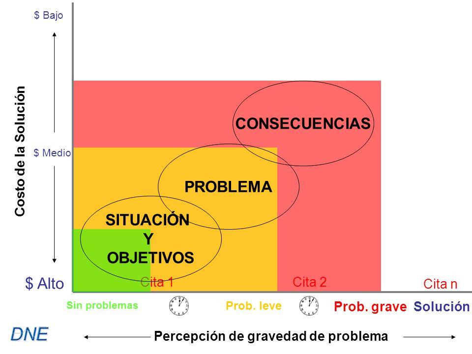 Cita 1Cita 2 Cita n $ Bajo $ Medio $ Alto Costo de la Solución Percepción de gravedad de problema SITUACIÓN Y OBJETIVOS PROBLEMA CONSECUENCIAS Sin problemas Prob.