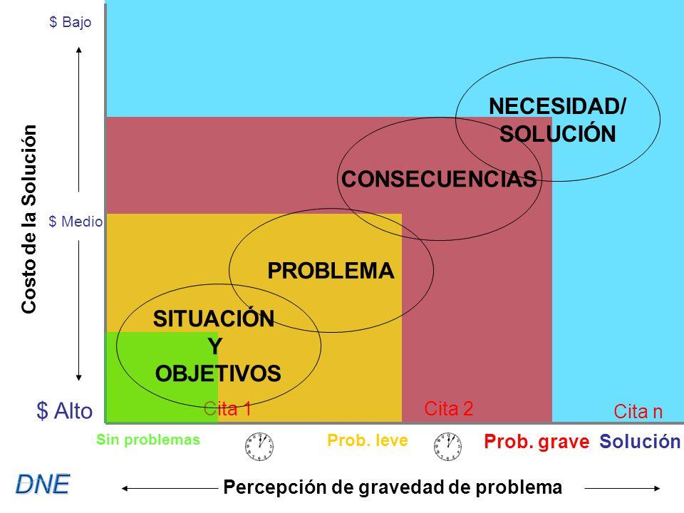 Cita 1Cita 2 Cita n $ Bajo $ Medio $ Alto Costo de la Solución Percepción de gravedad de problema SITUACIÓN Y OBJETIVOS NECESIDAD/ SOLUCIÓN PROBLEMA CONSECUENCIAS Sin problemas Prob.