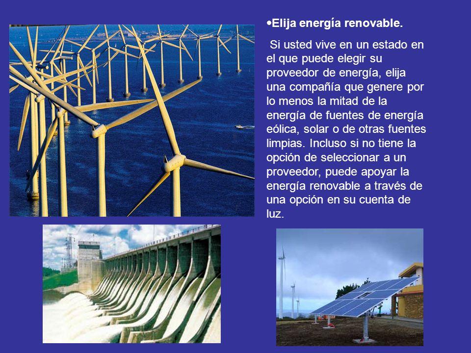 Elija energía renovable. Si usted vive en un estado en el que puede elegir su proveedor de energía, elija una compañía que genere por lo menos la mita