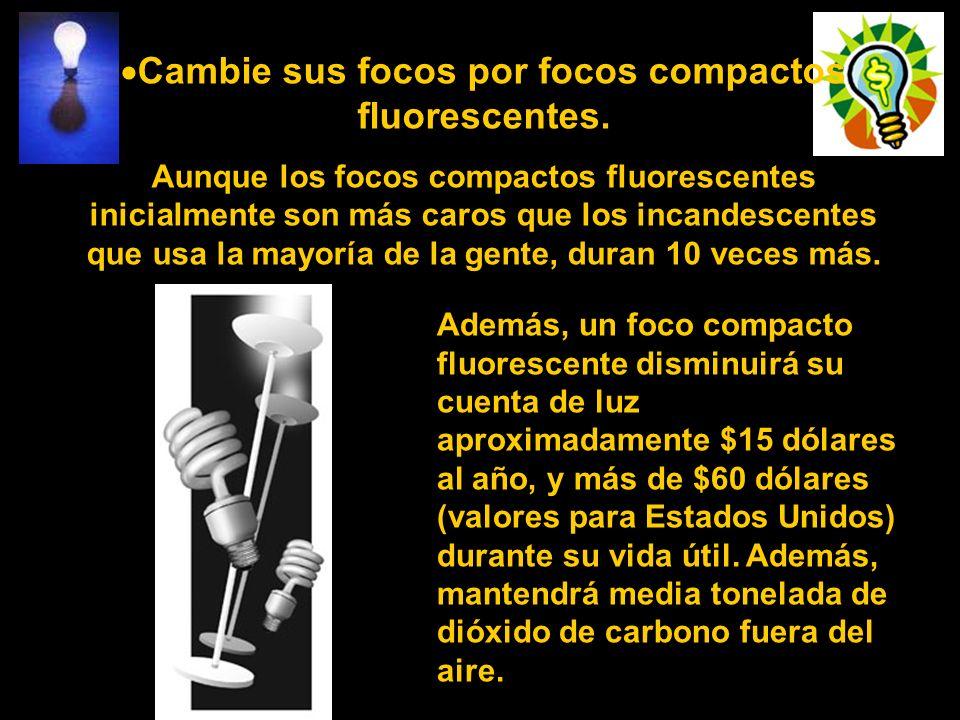 Cambie sus focos por focos compactos fluorescentes. Aunque los focos compactos fluorescentes inicialmente son más caros que los incandescentes que usa
