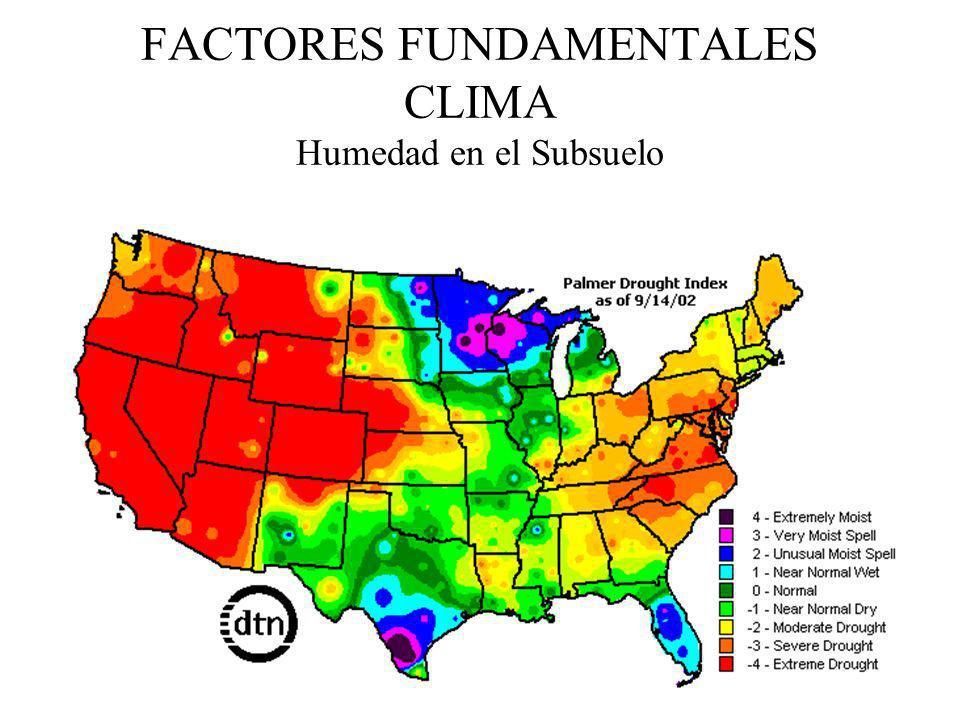 FACTORES FUNDAMENTALES CLIMA Humedad en el Subsuelo