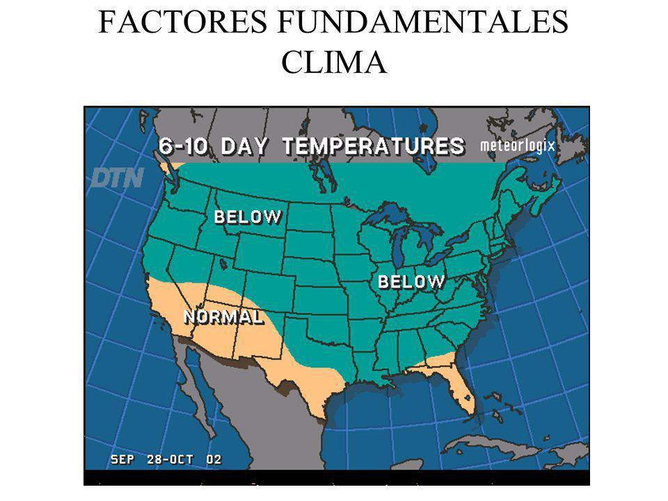 FACTORES FUNDAMENTALES CLIMA