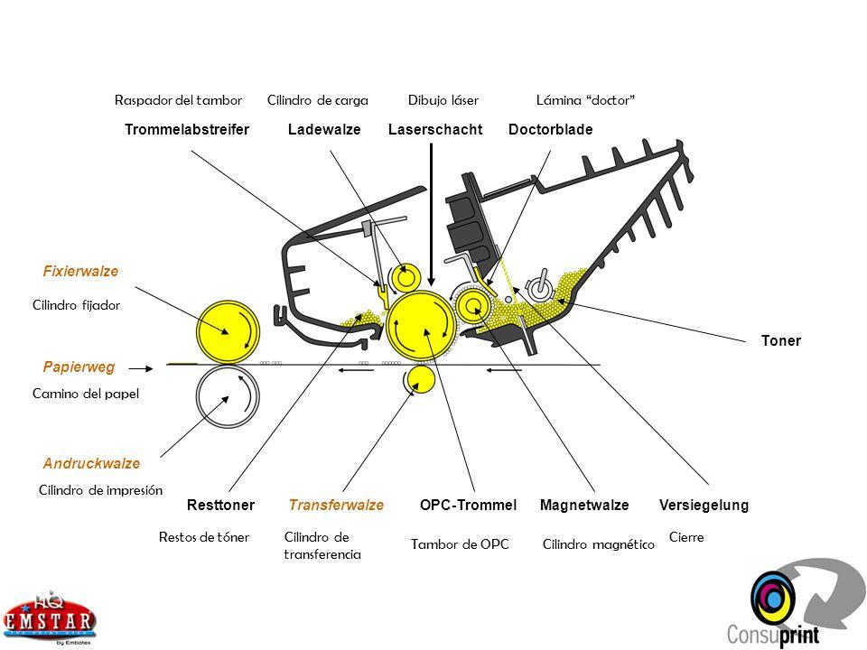 ResttonerTransferwalzeMagnetwalzeOPC-TrommelVersiegelung Fixierwalze Andruckwalze Toner LadewalzeTrommelabstreiferDoctorbladeLaserschacht Papierweg Ra