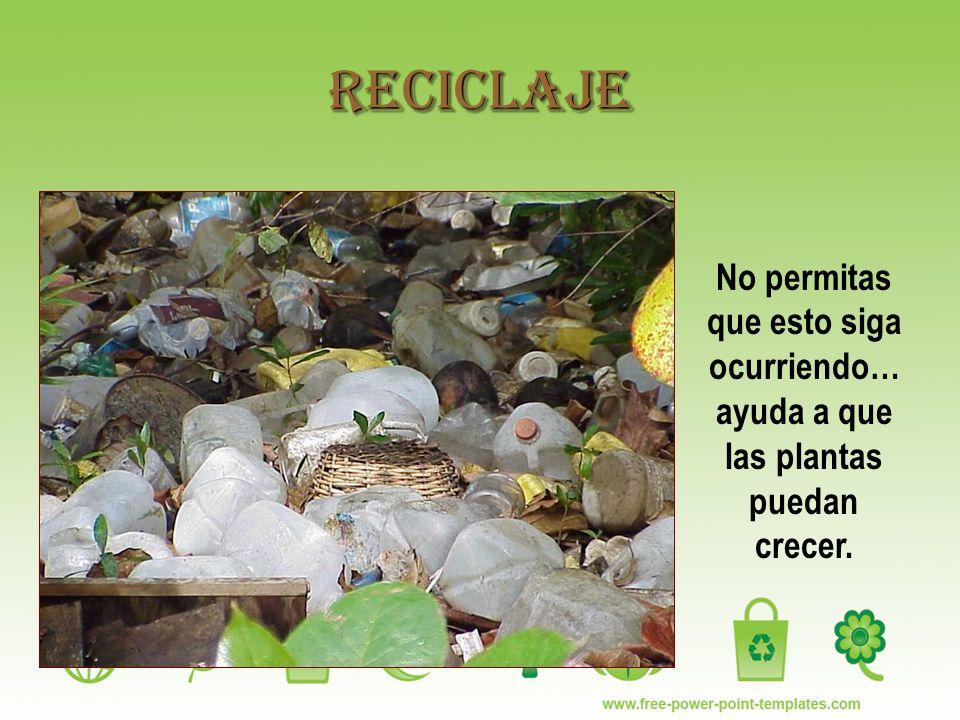 Reciclaje No permitas que esto siga ocurriendo… ayuda a que las plantas puedan crecer.