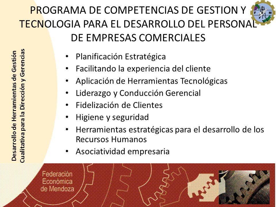 PROGRAMA DE COMPETENCIAS DE GESTION Y TECNOLOGIA PARA EL DESARROLLO DEL PERSONAL DE EMPRESAS COMERCIALES Planificación Estratégica Facilitando la expe