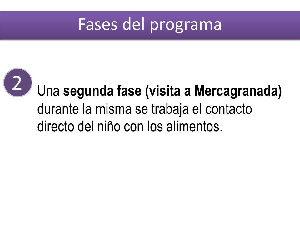 2 Una segunda fase (visita a Mercagranada) durante la misma se trabaja el contacto directo del niño con los alimentos.