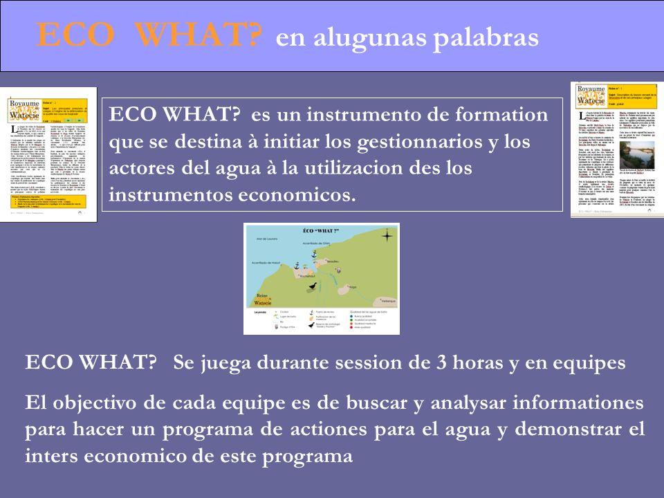 ECO WHAT. en alugunas palabras ECO WHAT.
