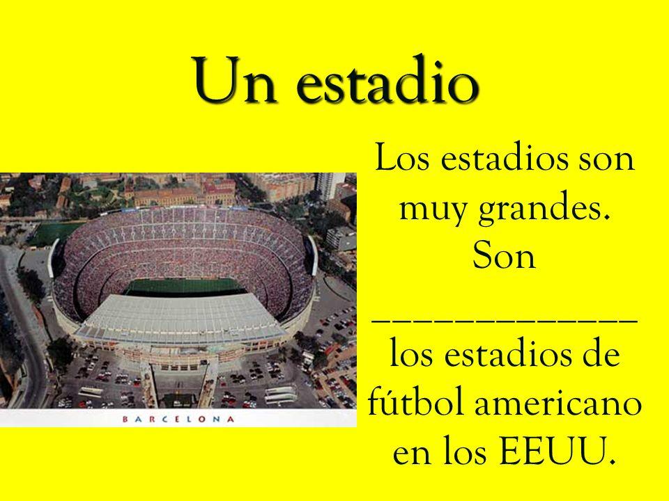 Un estadio Los estadios son muy grandes.