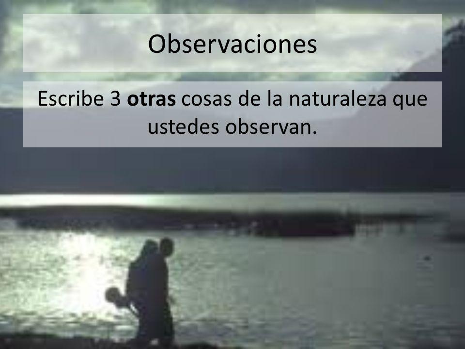 Observaciones Escribe 3 otras cosas de la naturaleza que ustedes observan.
