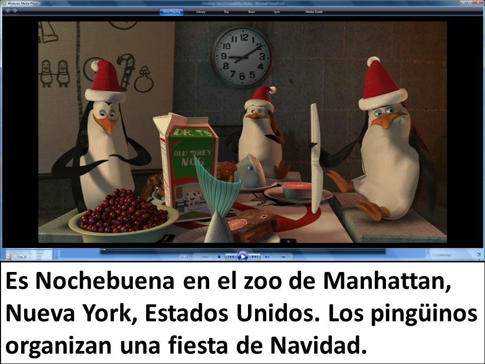 Es Nochebuena en el zoo de Manhattan, Nueva York, Estados Unidos. Los pingüinos organizan una fiesta de Navidad.