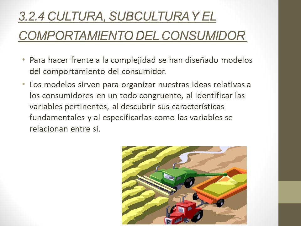 3.2.4 CULTURA, SUBCULTURA Y EL COMPORTAMIENTO DEL CONSUMIDOR Para hacer frente a la complejidad se han diseñado modelos del comportamiento del consumi