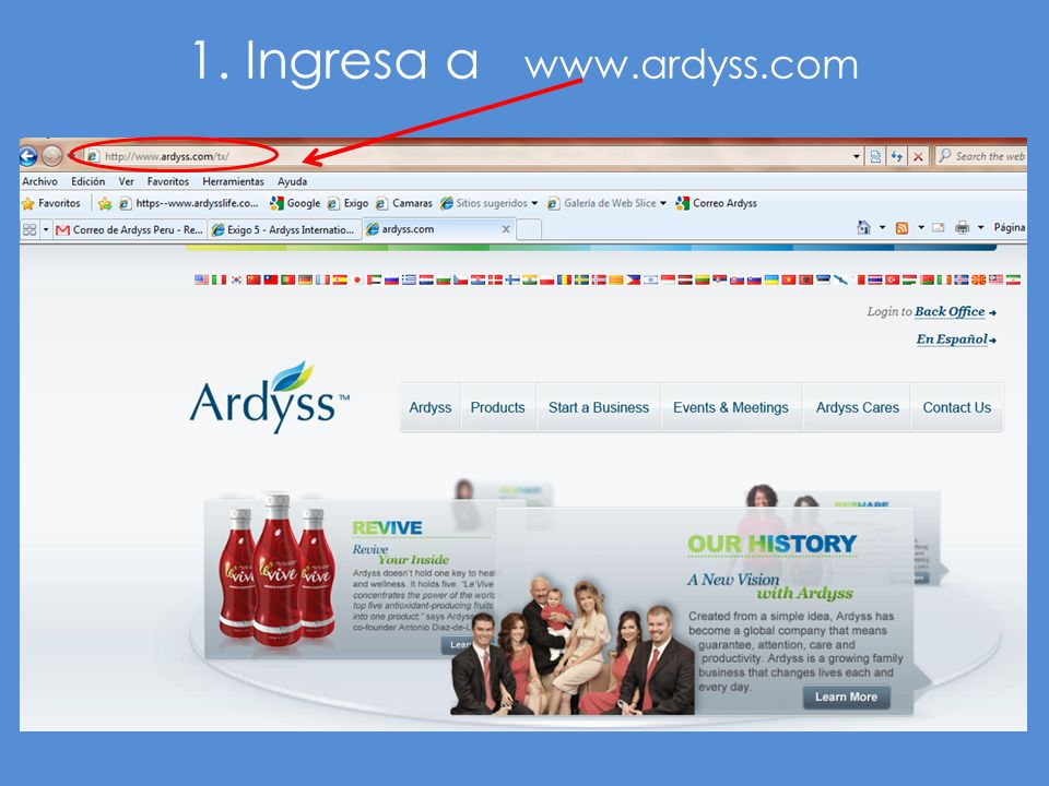 1. Ingresa a www.ardyss.com
