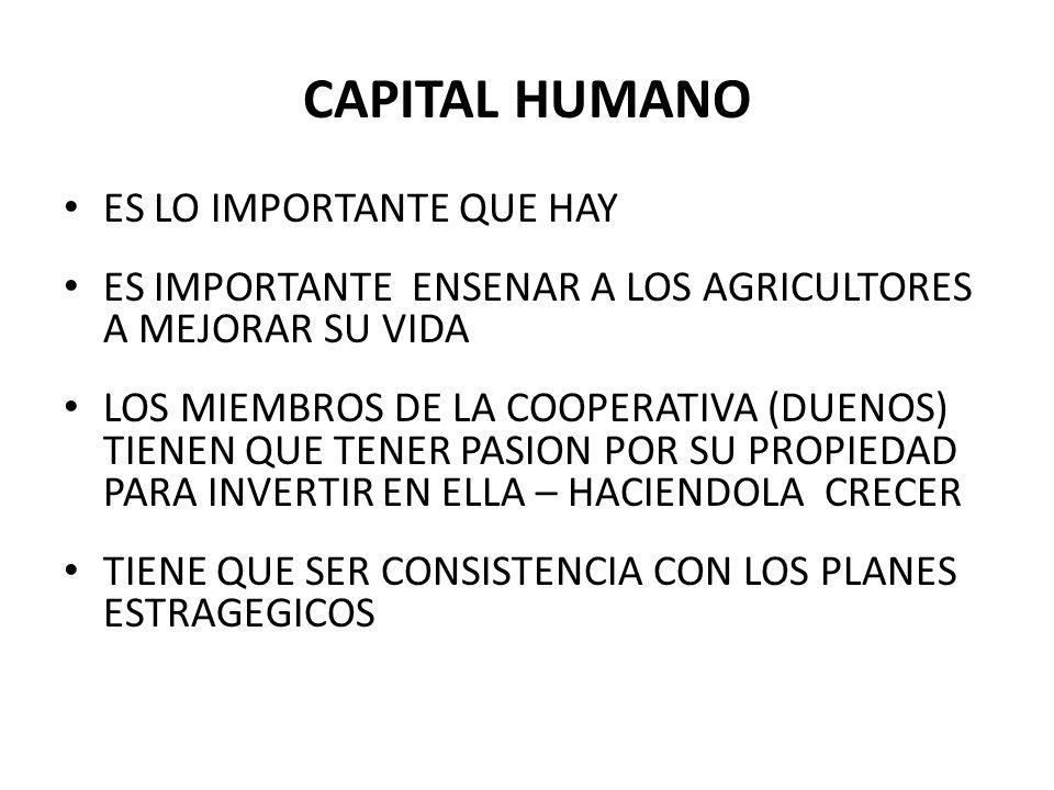 CAPITAL HUMANO ES LO IMPORTANTE QUE HAY ES IMPORTANTE ENSENAR A LOS AGRICULTORES A MEJORAR SU VIDA LOS MIEMBROS DE LA COOPERATIVA (DUENOS) TIENEN QUE TENER PASION POR SU PROPIEDAD PARA INVERTIR EN ELLA – HACIENDOLA CRECER TIENE QUE SER CONSISTENCIA CON LOS PLANES ESTRAGEGICOS