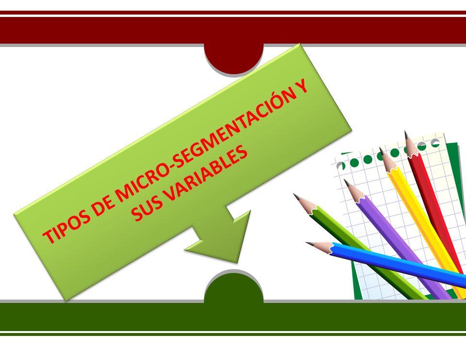 TIPOS DE MICRO-SEGMENTACIÓN Y SUS VARIABLES