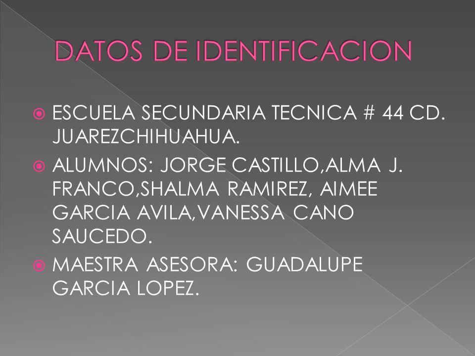 ESCUELA SECUNDARIA TECNICA # 44 CD. JUAREZCHIHUAHUA.