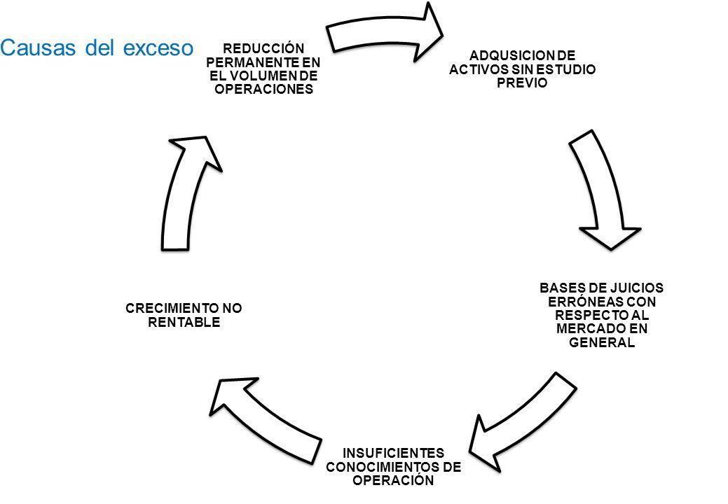 Causas del exceso ADQUSICION DE ACTIVOS SIN ESTUDIO PREVIO BASES DE JUICIOS ERRÓNEAS CON RESPECTO AL MERCADO EN GENERAL INSUFICIENTES CONOCIMIENTOS DE