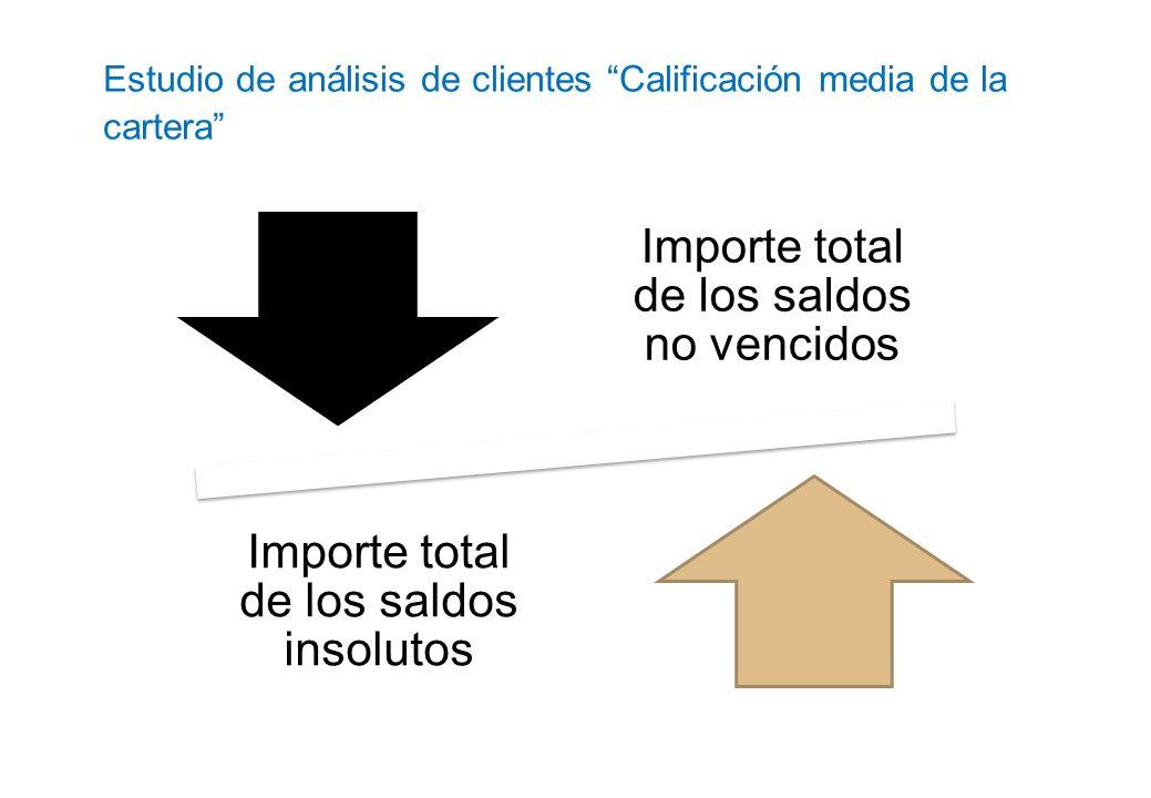 Estudio de análisis de clientes Calificación media de la cartera Importe total de los saldos no vencidos Importe total de los saldos insolutos