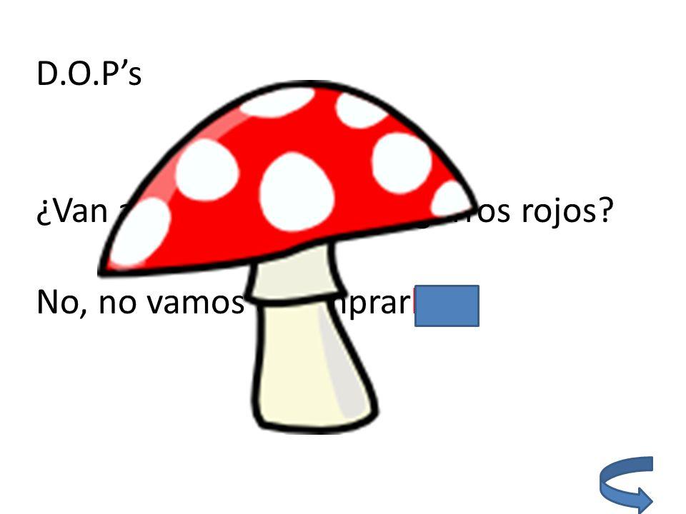 Boot verbs: Yo entiendo (understand) el español un poco.
