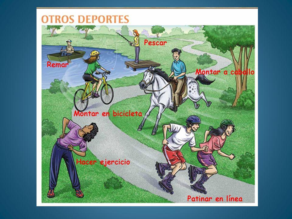 Remar Montar en bicicleta Pescar Montar a caballo Patinar en línea Hacer ejercicio