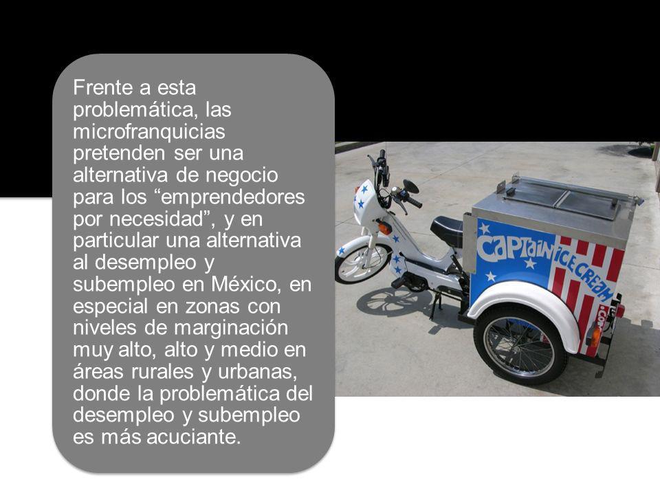 EMPRESA SOCIAL Aliado: Fundación Clinton Área de estudio: Región Los Altos, Chiapas Muestra diseñada a partir del método de muestreo aleatorio simple y la definición de lotes a partir de la metodología LQAS.