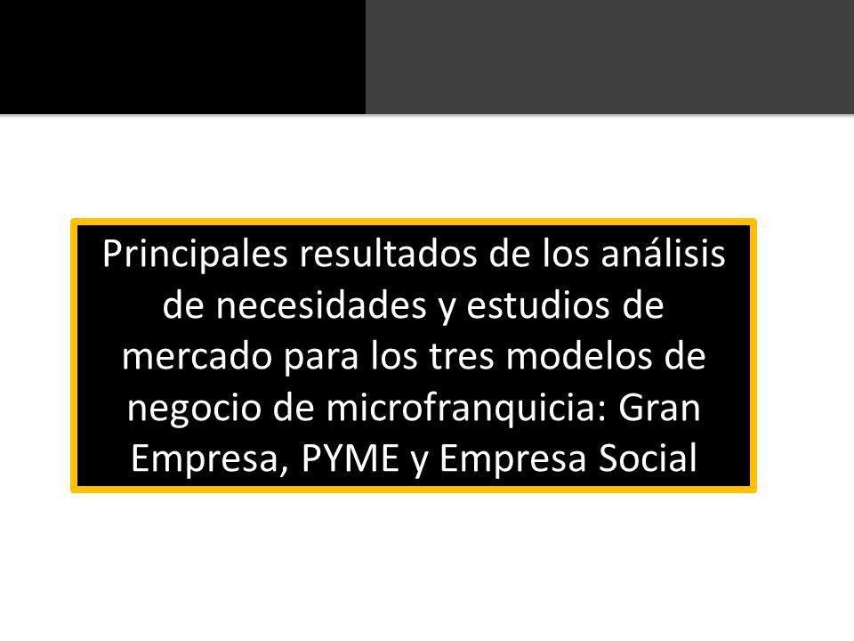 Principales resultados de los análisis de necesidades y estudios de mercado para los tres modelos de negocio de microfranquicia: Gran Empresa, PYME y