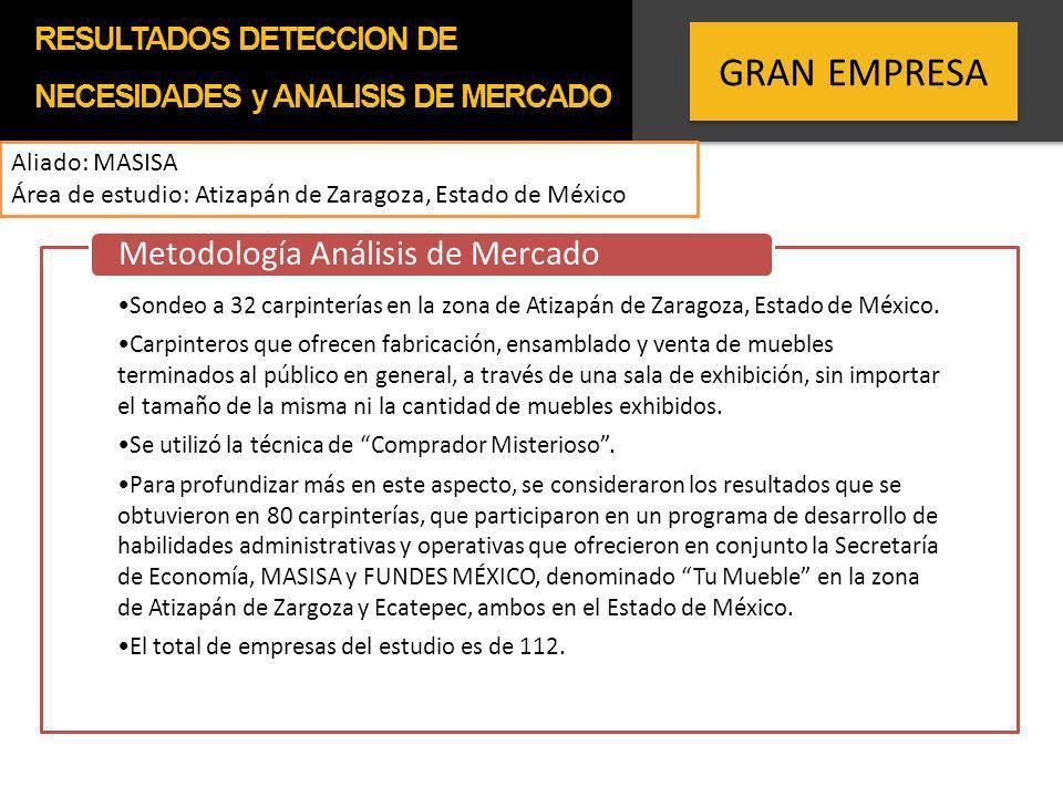 GRAN EMPRESA Aliado: MASISA Área de estudio: Atizapán de Zaragoza, Estado de México Sondeo a 32 carpinterías en la zona de Atizapán de Zaragoza, Estad