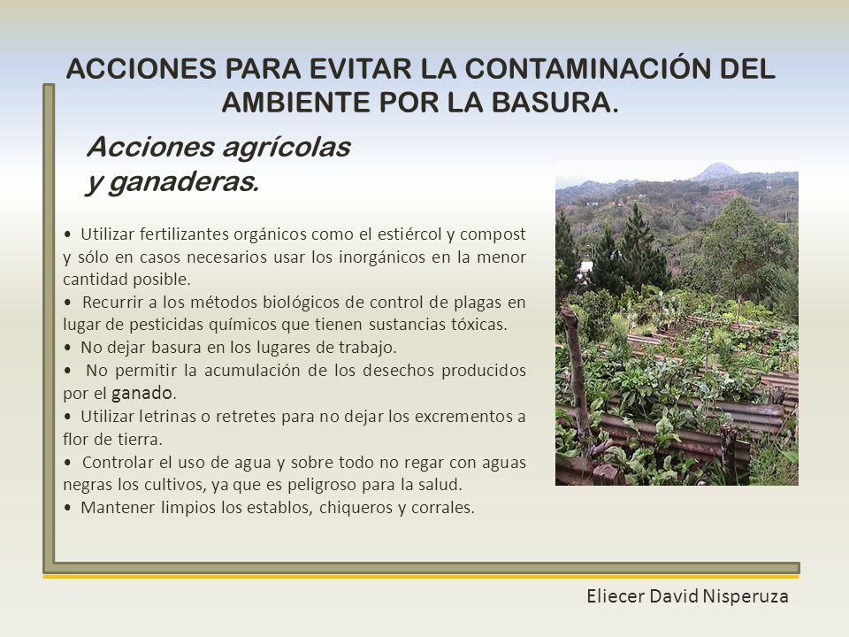Eliecer David Nisperuza ACCIONES PARA EVITAR LA CONTAMINACIÓN DEL AMBIENTE POR LA BASURA. Utilizar fertilizantes orgánicos como el estiércol y compost