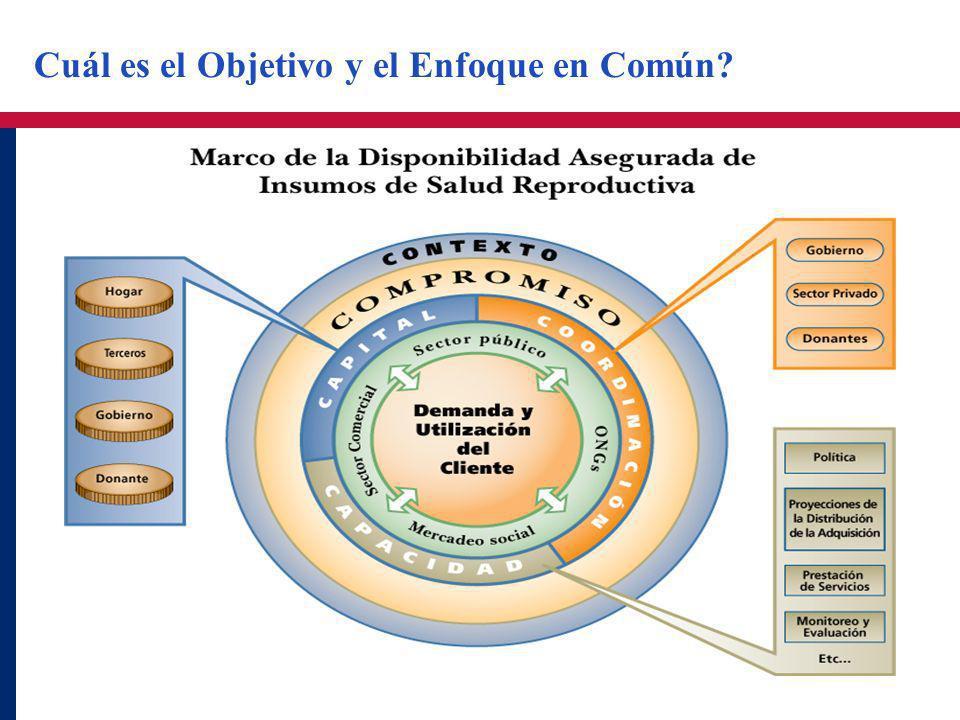Cuál es el Objetivo y el Enfoque en Común?