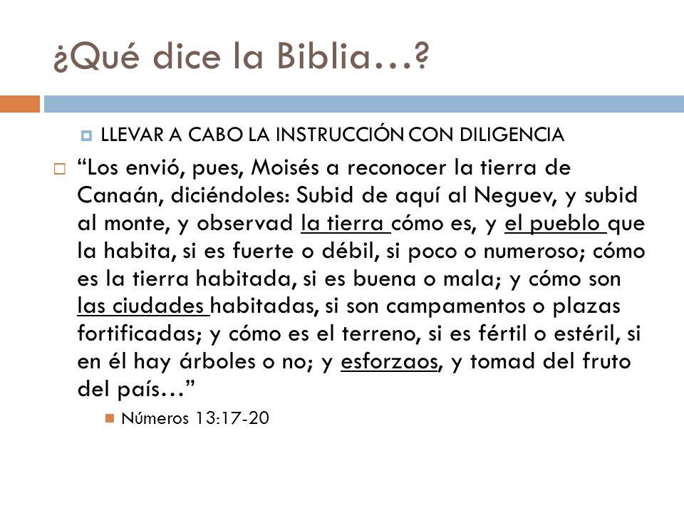 ¿Qué dice la Biblia…? LLEVAR A CABO LA INSTRUCCIÓN CON DILIGENCIA Los envió, pues, Moisés a reconocer la tierra de Canaán, diciéndoles: Subid de aquí