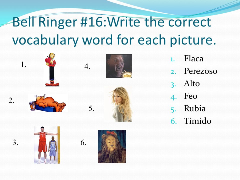 Bell Ringer #16:Write the correct vocabulary word for each picture. 1. Flaca 2. Perezoso 3. Alto 4. Feo 5. Rubia 6. Timido 1. 2. 3. 4. 5. 6.