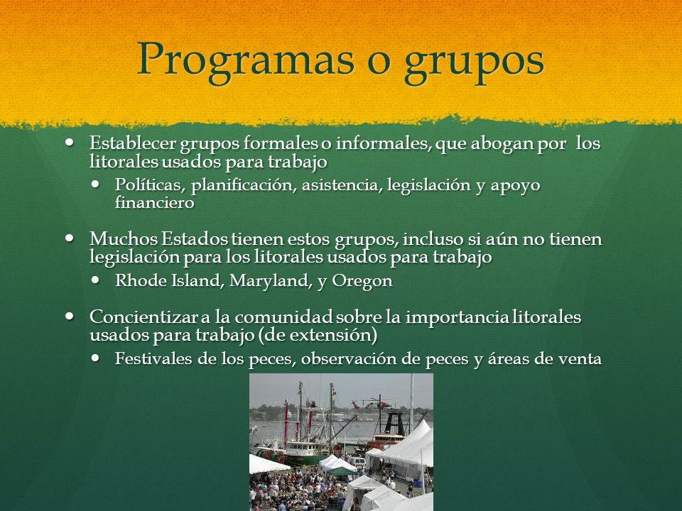 Programas o grupos Establecer grupos formales o informales, que abogan por los litorales usados para trabajo Establecer grupos formales o informales,