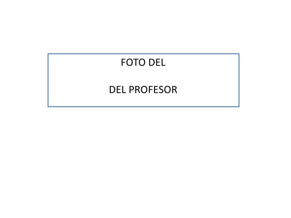 FOTO DEL DEL PROFESOR
