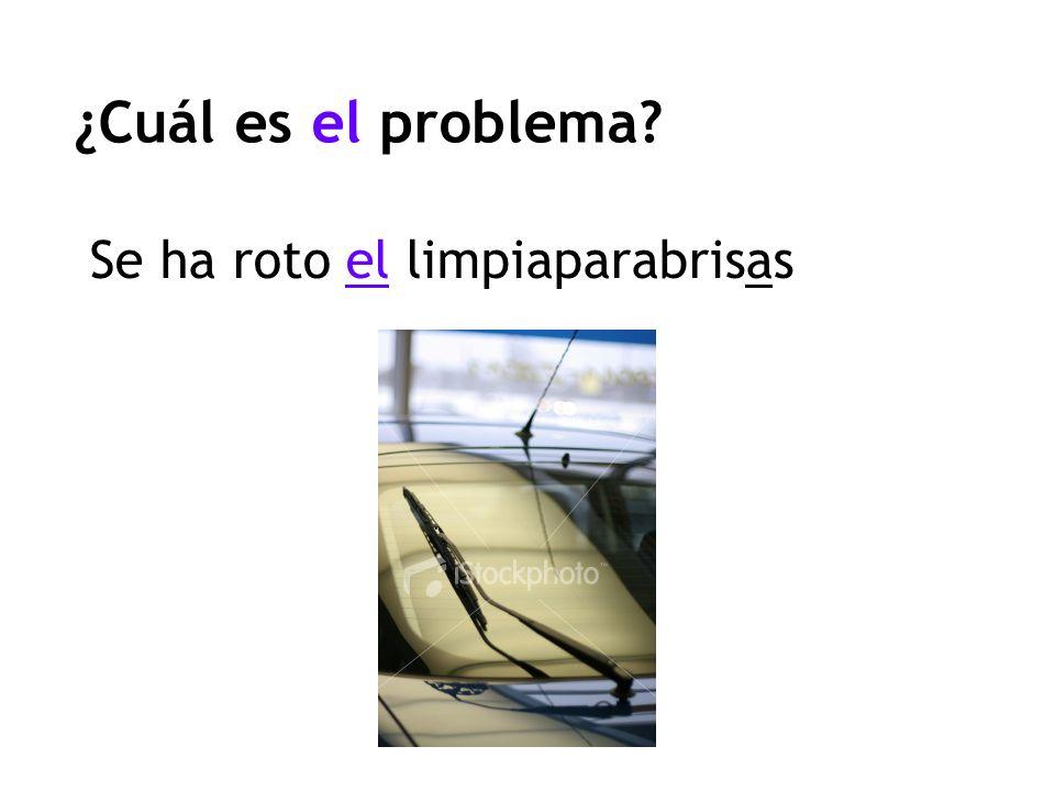 ¿Cuál es el problema? Se ha roto el limpiaparabrisas