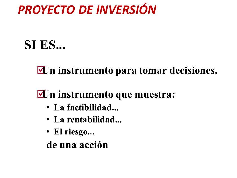 PROYECTO DE INVERSIÓN SI ES... Un instrumento para tomar decisiones. Un instrumento que muestra: La factibilidad... La rentabilidad... El riesgo... de