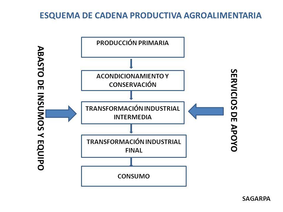 PRODUCCIÓN PRIMARIA ACONDICIONAMIENTO Y CONSERVACIÓN TRANSFORMACIÓN INDUSTRIAL INTERMEDIA TRANSFORMACIÓN INDUSTRIAL FINAL CONSUMO ESQUEMA DE CADENA PR