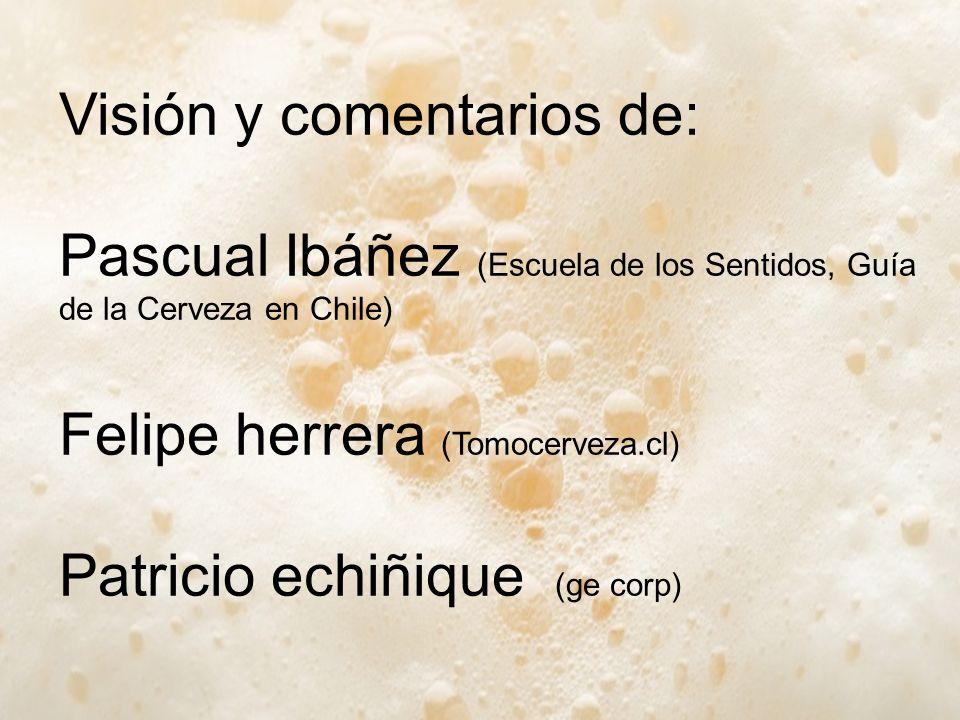 Visión y comentarios de: Pascual Ibáñez (Escuela de los Sentidos, Guía de la Cerveza en Chile) Felipe herrera (Tomocerveza.cl) Patricio echiñique (ge corp)