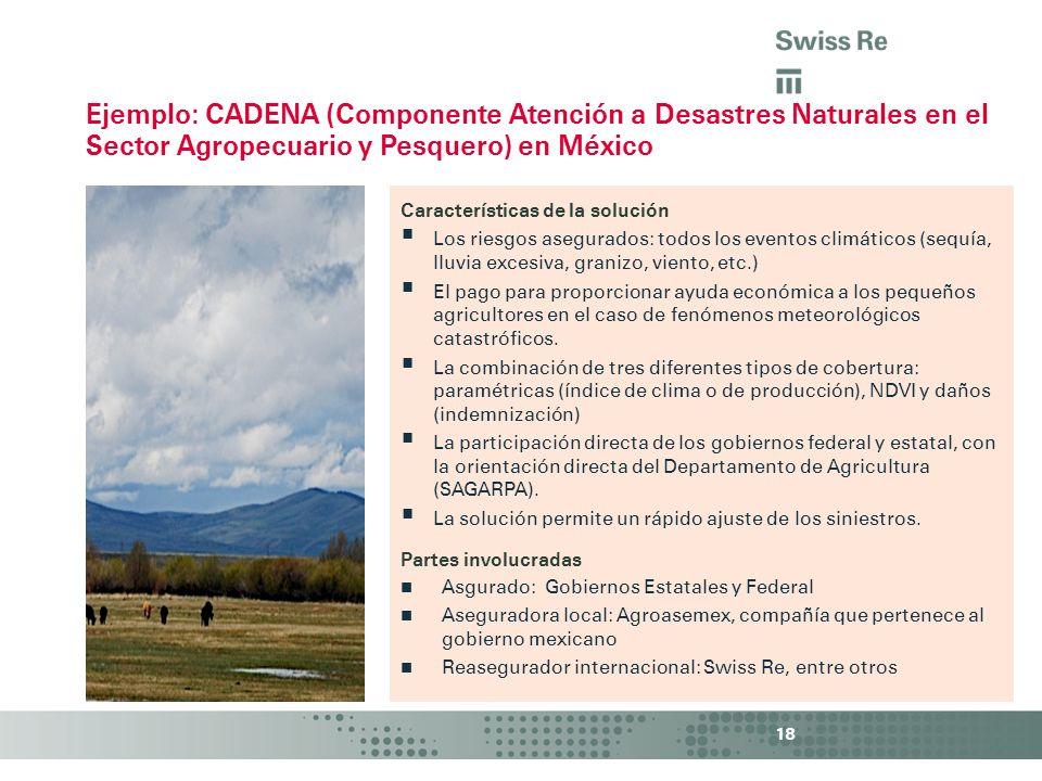 18 Características de la solución Los riesgos asegurados: todos los eventos climáticos (sequía, lluvia excesiva, granizo, viento, etc.) El pago para p