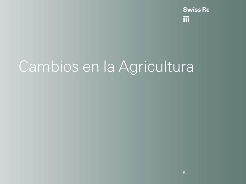 Cambios en la Agricultura 5