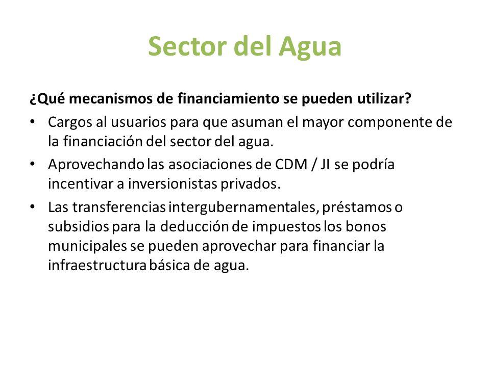 Sector del Agua ¿Qué mecanismos de financiamiento se pueden utilizar? Cargos al usuarios para que asuman el mayor componente de la financiación del se